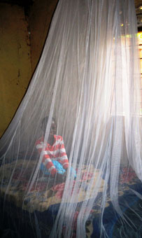 Malaria Prevention